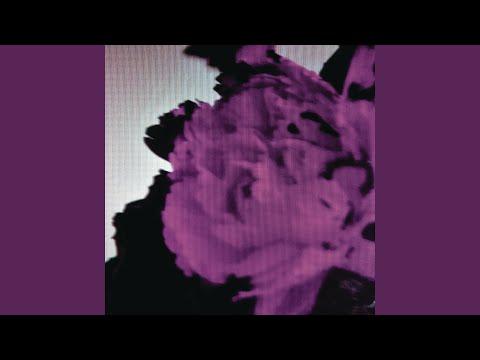 All of Me (Tiësto's Birthday Treatment Remix) (Radio Edit)