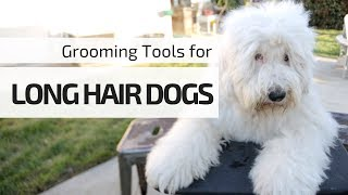 Stainless Steel Comb┃Tools You NEED for Grooming Your Long Hair Dogs┃Ed&Mel