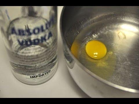 Лечение собак водкой и яйцом от чумки: польза или вред?