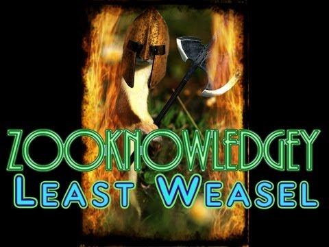 Zooknowledgey - The Least Weasel is Hardcore