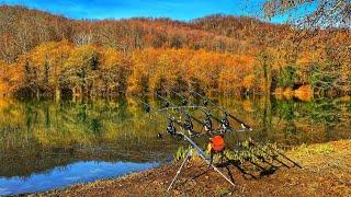 Зимний карпфишинг Озеро Барановское Разведка боем