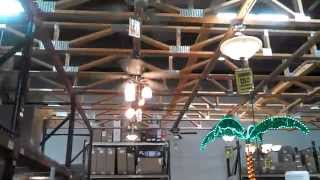 Ceiling Fans in a HOBO building materials store