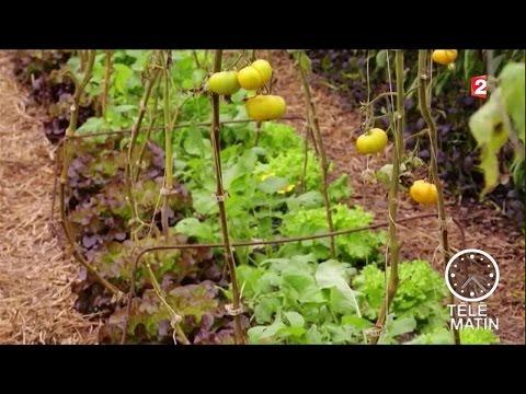 Environs - Permaculture : une agriculture réfléchie