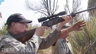 The Video of the N.R.A.'s Leader and His Wife Shooting Elephants | The New Yorker
