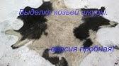 Выделанные овечья шкуры - YouTube