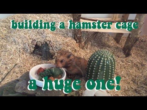 building a DIY hamster cage🍒