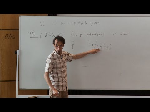Nikolay Nikolov - Words in profinite groups: beyond finite generation