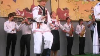 Cornel Borza-Ardeleana din Tulca