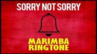 latest-iphone-ringtone---sorry-not-sorry-marimba-remix-ringtone