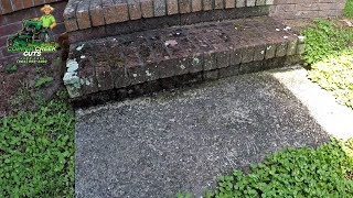 Pressure Washing Filthy, Moldy, Fungus-laden, Moss-Ridden, Plain-Ol'-DIRTY Steps!