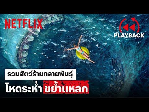 รวม 'หนังสัตว์ร้าย' กลายพันธุ์ โหดระห่ำ ขย้ำแหลก | PLAYBACK | Netflix