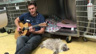 Dr. Ross Henderson sings to a cat