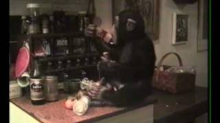 Schimpansen Ola - Avsnitt 6: Ola ska lägga sig