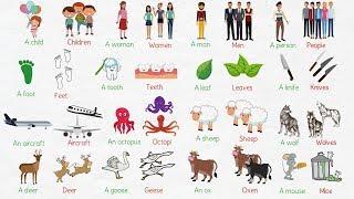 Irregular Plural Nouns in English | Singular and Plural Nouns
