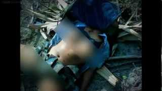 Repeat youtube video Sri Lanka since the war ended (WARNING - contains disturbing images)