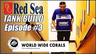 Reefer Deluxe 525 XL Tank Build #3 - Acclimating & Dipping SPS from World Wide Corals!