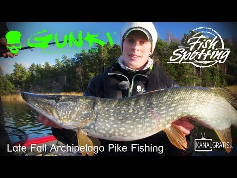 Gunki TV - Late Fall Archipelago Pike Fishing in Sweden - Fish Spotting (French subtitles)