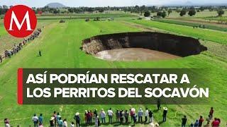 Así rescatarán a perritos que cayeron en socavón de Puebla