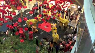 Chinese New Year - Singapore