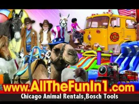 AllTheFunIn1.com / Mobile, Traveling Petting Zoo Chicago, Chicagoland, Illinois, Animal Rentals