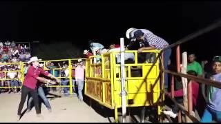 Toro el Satélite en tetecala Morelos