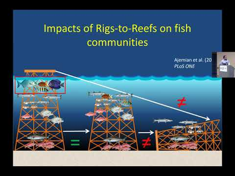 """Rigs to Reefs"" in the Western Gulf of Mexico: Sampling Considerations, Fisheries Impacts"