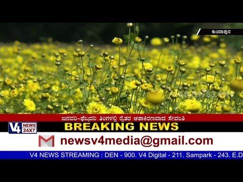 Demand increases for Kundapura Hemmadi Sevanthige in Coastal region.