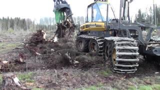 Kantojen nostoa metsäkoneella – UPM Metsä