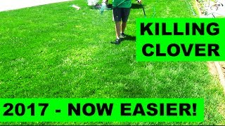 How to get rid of clover in 2017