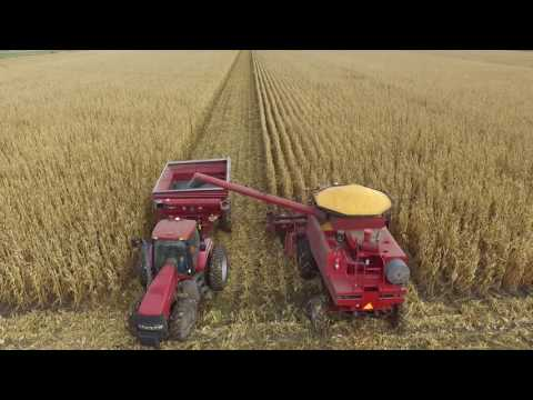 Epp Farms Corn Harvest 2016