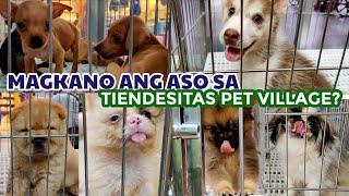 PET VILLAGE LATEST PRICE LIST & STORE NAME | Tiendesitas  (October 2020)