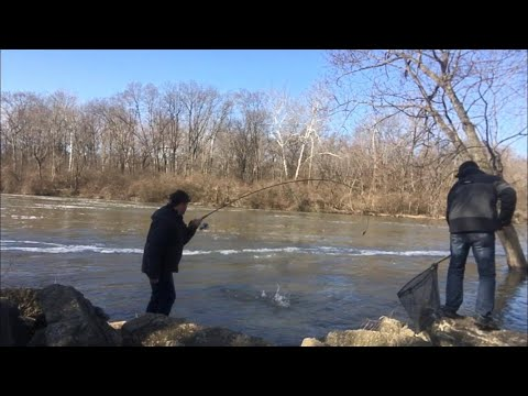 How To Fish The St. Joseph River!