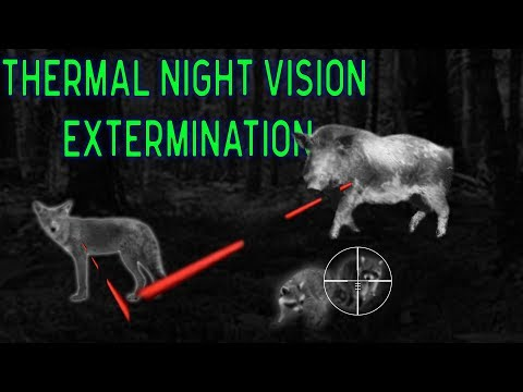 THERMAL Night Vision Hunting EXTERMINATION | 5 Animals Down With 9mm Tracer Bullet