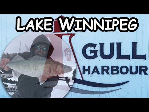 Ice Fishing Lake Winnipeg | Gull Harbour Greenbacks!!