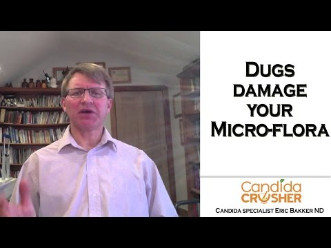 How Do Drugs Damage Your Intestinal Microflora