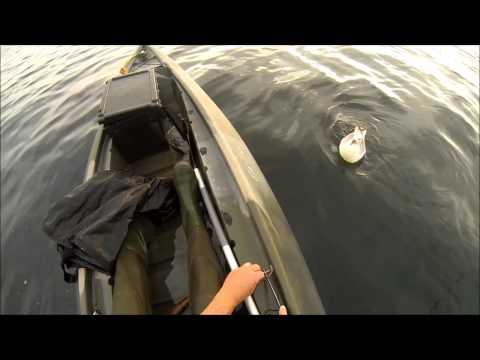 SCOTTISHKAYAFISHING.CO.UK Part 28 John Ord Here  Plenty Fish And Hand Feeding Fulmar