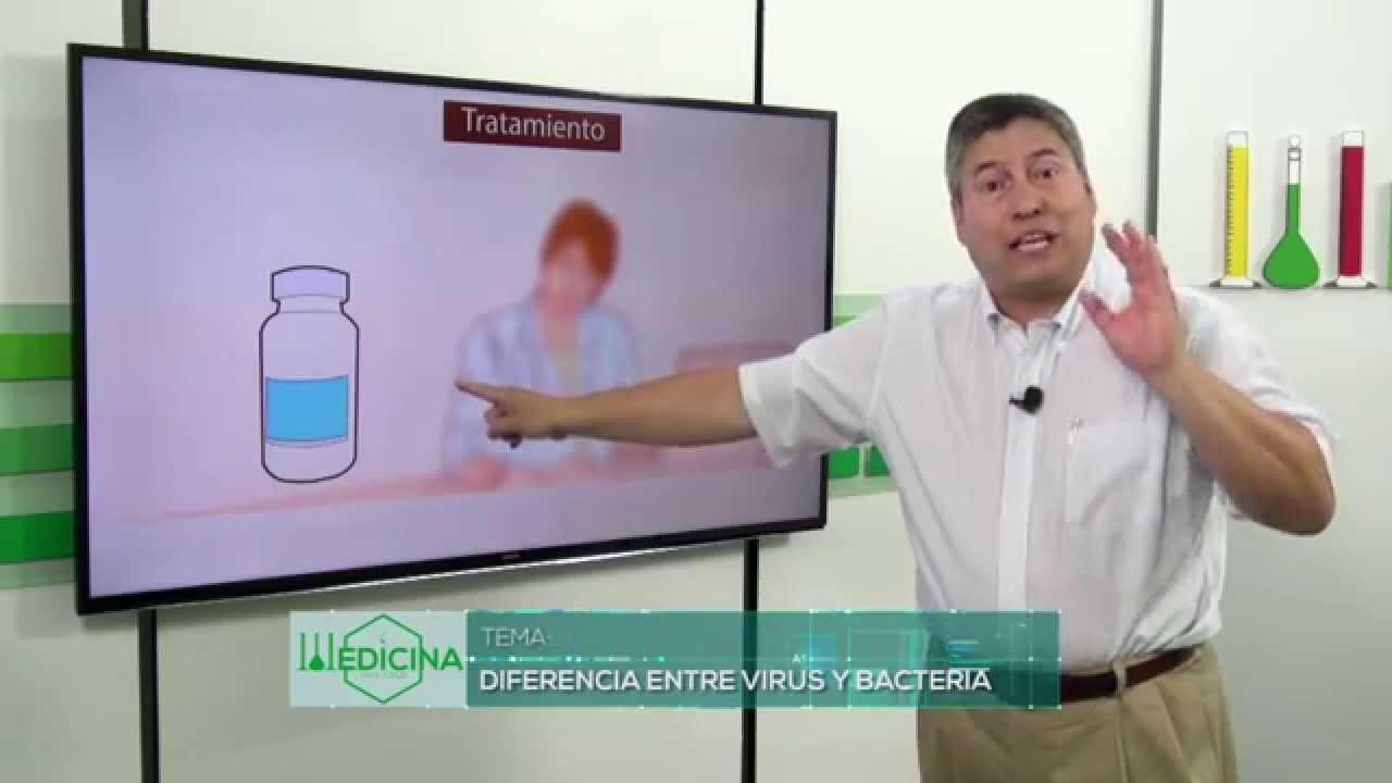 Download Medicina para todos: diferencia entre virus y bacteria