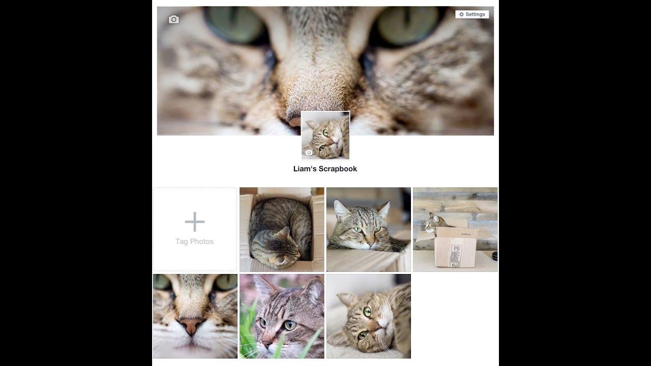 gallery — PhotoRec — Photorec tv