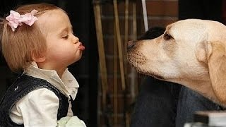 Roliga Hundar Och Barn Talar - Söt Hund