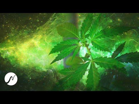 experimental:-cannabis-frequency-(thc-molecule)---30-hz-binaural-beats