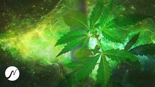 Cannabis Frequenz (THC Molekül) - Binaural Beats (experimentell!)