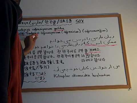 essay about comparison between turkish korean culture