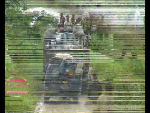 4WD Offroad problems in Democratic Republic of Congo (RDC)