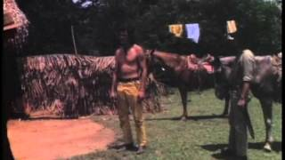 Tuxtepec 1978 (el hechizo del pantano)