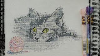 Первый кот пошел)/DMC Color Variations  / Вышивка крестиком/