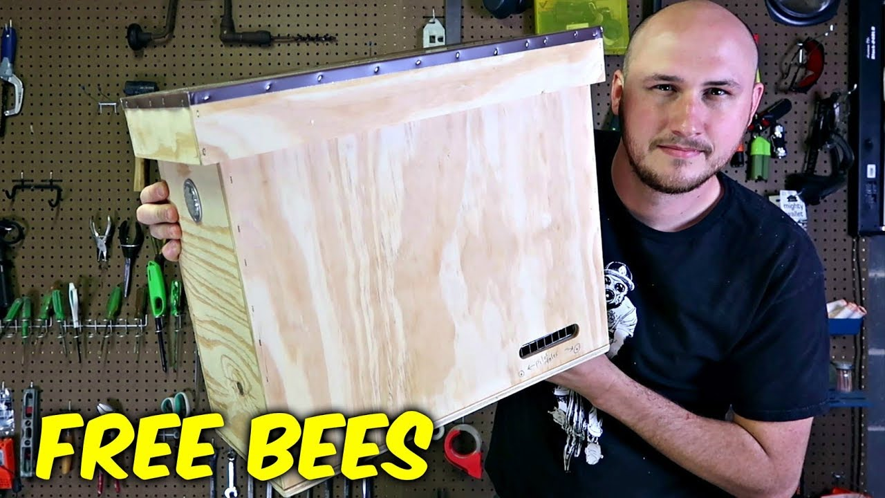 how-to-build-a-bait-hive