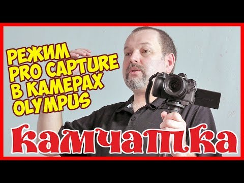 Фотограф Евгений Уваров о режиме Pro Capture камер Olympus