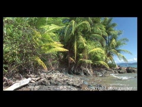 Impressions of Costa Rica
