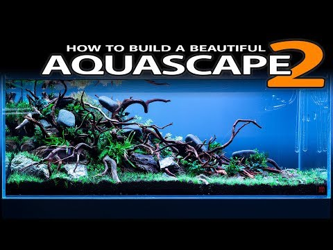 HOW TO BUILD A BEAUTIFUL AQUASCAPE EASILY - PLANTING