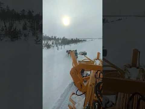 Автогрейдер СДМ-25 напугал оленей